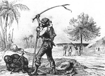 the abolition of slavery in brazil An abbreviated timeline of british and brazilian slavery law in brazil brazil was the largest importer of african slaves throughout the span of the atlantic slave trade.